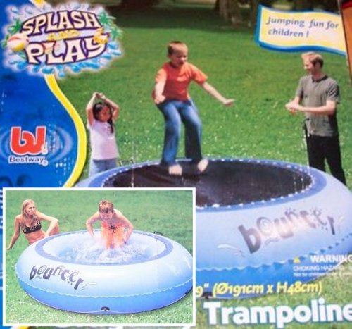 Dragon Fly trampoline pool